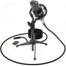 Микрофон RITMIX RDM-160 Black