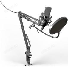 Микрофон RITMIX RDM-169 Black