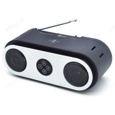 Радиоприёмник Fepe FP-02-W (USB,Bluetooth)